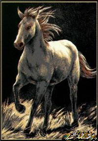 Horse Theme Rug